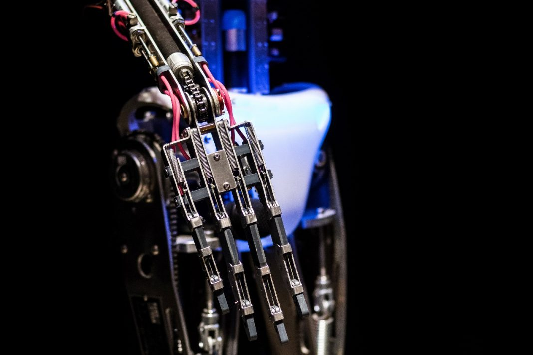 義肢的選擇:裝飾性義肢、功能型義肢